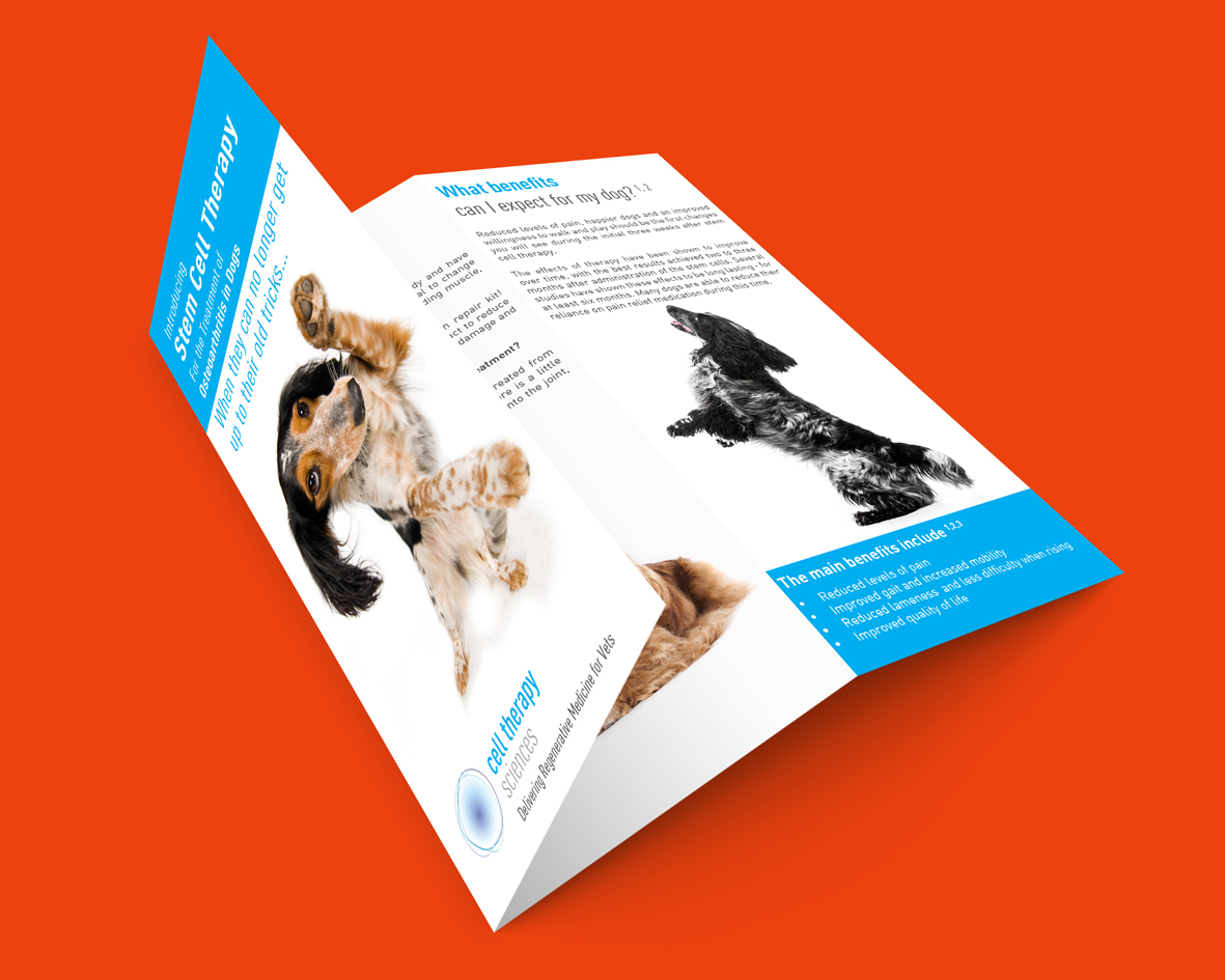 For Something A Bit More Substantial Than Single A6 Or A5 Leaflet Go Folded One And Get Information Detail On It Tri Fold Leaflets Are